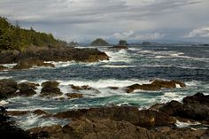 Ucluelet Coast - Ucluelet, British Columbia This one's a beaut! Vancouver City, Vancouver Island, Columbia Travel, British Columbia, Bc Place, Western Canada, A Level Art, Beavers, Wild West