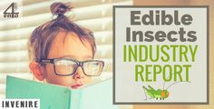 Edible Insects Industry Report