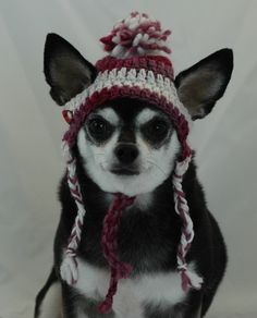 Dog Crocheted Hat Cranberry and white ear flap by ShaggyChic, $15.00  Bindi NOT included!!!
