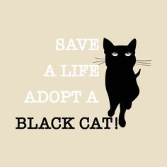 Check out this awesome 'Save+A+Life+Adopt+A+Black+Cat' design on @TeePublic!