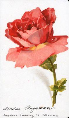Rose Vintage Printables Cards Postcards Ephemera Labels