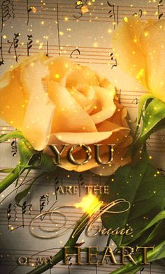 You are the music of my heart love quotes music gif love images love gifs love pic love pic images love. Flowers Gif, Beautiful Rose Flowers, Beautiful Gif, Love Flowers, Beautiful Pictures, Heart Pictures, Gif Pictures, Moving Pictures, Image Positive