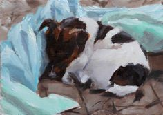 Jack Russell Artwork - Jack /Russell Sleeping - could be my dog!