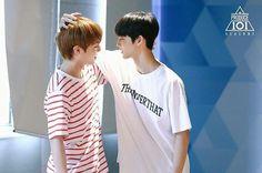 produce 101 season 2 winkdeep hands on me park jihoon bae jinyoung 3 In One, One Pic, Bae Jinyoung Produce 101, Dan Lin, First Boyfriend, You Are My World, Produce 101 Season 2, Woo Young, Kim Jaehwan
