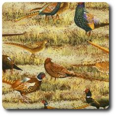 Pheasants Novelty Fabric, Free Range, Pheasant, Peeps, Haha, Fun, Painting, Animals, Animales