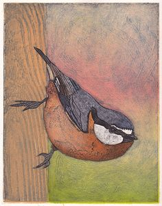Red Breasted Nuthatch 3 Hand Pulled Collograph by bonniemurrayart,