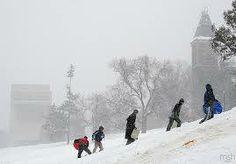 Winter 2013 in Ithaca NY at Cornell University Cornell University, Go Red, College Campus, Law School, Preston, Acre, Landscape, City, Winter