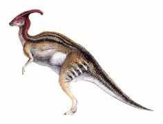 The Lost World Jurassic Park male Parasaurolophus