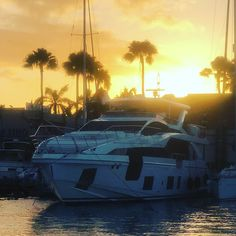Good morning Sunshine !  ☀️🌴🍍🥥 #aruba #onehappyisland #oranjestad #marina #caribbean #travel #yacht #adventure #sunshine #caribbeansunshine #yachtlife #travelphotography #sunrise #justgo #vacation #caribbeaninfo