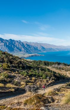 Hiking the Queenstown Hill Time Walk - Things to do in Queenstown - Wandering the World
