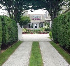 Nantucket: where each home is dreamier than the next. Nantucket Home, Nantucket Island, Lady Grey, Hedges, Home Remodeling, Sweet Home, Sidewalk, Future, Pretty