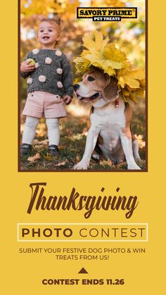 **Thanksgiving Photo Giveaway** We love seeing festive photos of dogs during this time of the year! Rawhide Bones, Thanksgiving Photos, Pet News, Healthy Pets, 3 Friends, Pet Treats, Dog Photos, Photo Contest, Festive