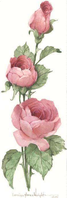 68 Ideas Flowers Vintage Drawing Pink Roses For 2019 Art Floral, Deco Floral, Floral Flowers, Vintage Rosen, Vintage Diy, Vintage Paper, Botanical Illustration, Botanical Prints, Rose Art