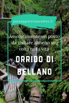 Travel Planner, Travel List, Italy Travel, Wonderful Places, Beautiful Places, Trekking, Like A Local, Future Travel, Getting To Know