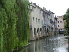 Treviso... i buranelli