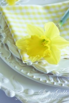 StoneGable: DAFFODIL PROFUSION TABLE