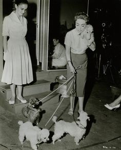 0 joan crawford walking her 3 poodles and holding the fourth one in her arms 1959