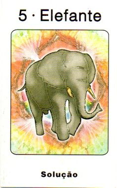 Elefante - Yin - Solução