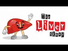 Watch your liver tell you all that you need to know about Hepatitis B