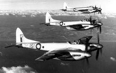 prototype sea hornet | ... prototype, flown post-war, followed by production Sea Hornet F Mk