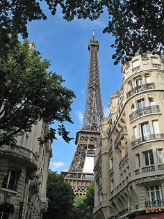 It's just crazy wonderful isn't it! Eiffel Tower towers in the skyline.