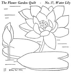 Flower Garden Quilt 17 - The Water Lily by polychrome, via Flickr