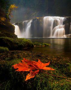 Lower Lewis Falls, Columbia Gorge, Washington State, USA