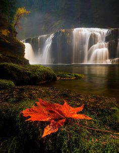 Lower Lewis Falls, Columbia Gorge, Washington State, USA