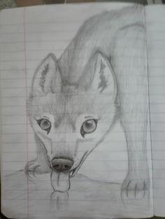 #Wolf #drink