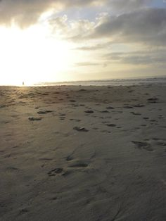 Folly Beach, SC - taken by me, Laura Elaine Smith