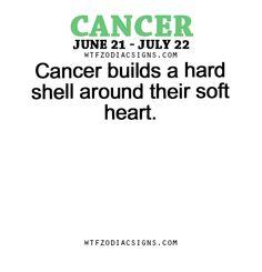 Cancer Zodiac Sign builds a hard shell around their soft heart.