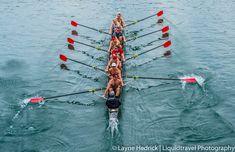 Rowing On Town Lake