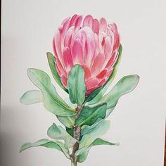 🎨 Watercolorist: @natalic_art #waterblog #акварель #aquarelle #drawing #art #artist #artwork #painting #illustration #watercolor #aquarela