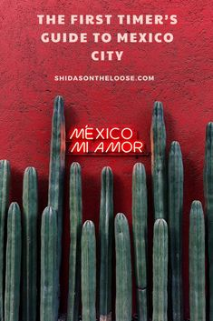 What to see on your first visit to Mexico City with a detailed map. | What to do in Mexico City | Mexico City Neighborhoods | Things to do in Mexico City | CDMX | DF | How to get around Mexico City