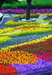 Basic Flower Garden Suggestions -- drought, wildflower, rain, and vine gardens.