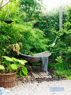 I västerläge löper en oregelbunden, nästan u-formad, sagolikt vacker rabatt som är 3 meter djup på sina ställen. Där kan man njuta i hängmattan omgärdad av bambu, prydnadsgräs och en formklippt dvärgalm. Som marktäckare har Camilla planterat krypkotula som växter samman med svartbräken, strutbräken, kungsbräken, sockblomma, sköldpaddsbräken, spetsbräken, glanskörsbär och parasollblad. Det blir en spännande blandning av höjder, nyanser och bladformer.
