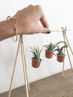 DIY Capsules Nespresso Plantes | Spring in Fialta