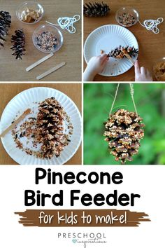 Let the kids make a pinecone bird feeder this spring! Easy DIY instructions for how to make this easy nature project. You'll love the variety of birds it'll attract to your yard! Diy Crafts For Kids Easy, Crafts For Seniors, Diy Arts And Crafts, Toddler Crafts, Easy Diy, Senior Crafts, Kids Crafts, Process Art Preschool, Preschool Art Activities