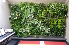 Image from http://bilinterior.com/wp-content/uploads/2012/12/plants-on-walls-vertical-gardens-wonderful-vertical-garden-house3.jpg.