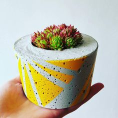 Ail+El design and create contemporary Irish homewares. Inspired by urban living and street art, Ail+El fuse the industrial qualities of concrete with geometric patterns and colour to create a vibrant range of products. Cement Pots, Concrete Planters, Pattern Concrete, Magenta, Succulent Planter Diy, Irish Design, Cement Crafts, Green Copper, Flower Pots