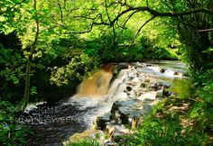 Pol An Easa Waterfall. Ballinamore, Co. Life Touch, Destiny, Devil, Scotland, Waterfall, Destinations, Places, Red, Travel