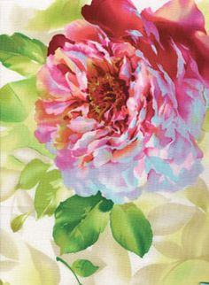 Rose in bloom, painting, artist unknown. Romantic Paintings, Beautiful Paintings, Watercolor Flowers, Watercolor Paintings, Art Aquarelle, Arte Floral, Love Art, Painting Inspiration, Painting & Drawing
