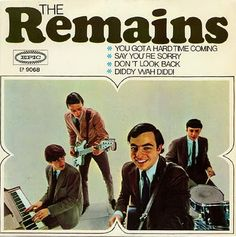 SIXTIES BEAT: The Remains