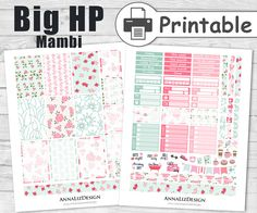 BIG Happy Planner Stickers PRINTABLE,Large Happy Planner Stickers,Mambi Happy Planner Stickers,February Planner Stickers,Shabby Chic Mint by AnnaLizDesign on Etsy