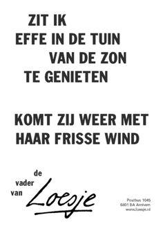 Frisse wind