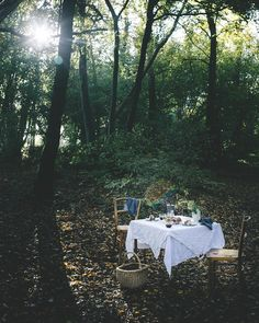 """Laura on Instagram: """"If you go down to the woods today you'll find a little magic there 💫✨ { Can you spot the 🌈? }"""" Outdoor Dinner Parties, Woods, Camping, Magic, Picnics, Instagram, Campsite, Woodland Forest, Forests"""