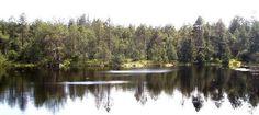 Poznávací okruh aneb výlet za jesenickými NEJ! River, Outdoor, Outdoors, Outdoor Games, Outdoor Living, Rivers