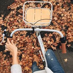 🍂 Bella Montreal 🍂 Insta: bella.montreal || Pinterest & WeHeartIt: bella4549 Four Seasons, Vsco, Gym Equipment, Cycling, Alternative, Bicycling, Biking, Road Cycling, Seasons Of The Year