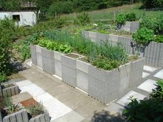 Concrete Raised Garden Bed, Permaculture - Sustainable Living easily done with stacked concrete blocks as well Easy Garden, Home And Garden, Edible Garden, Cinder Block Garden, Cinder Blocks, Building Raised Beds, Dig Gardens, Raised Gardens, Growing Gardens