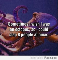 Sometimes I Wish I Was An Octopus So I Could...lol